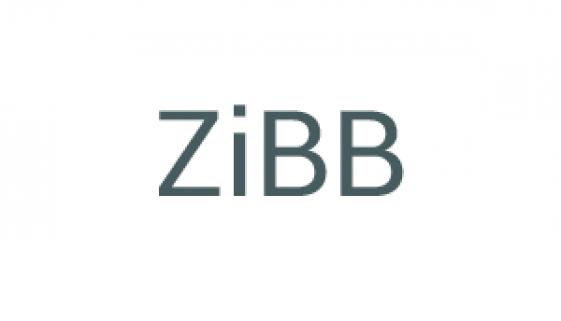 ZiBB © Beyond Imagination