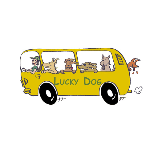 Website Relaunch | Lucky Dog